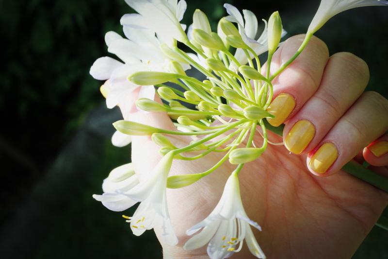 nails: summertime