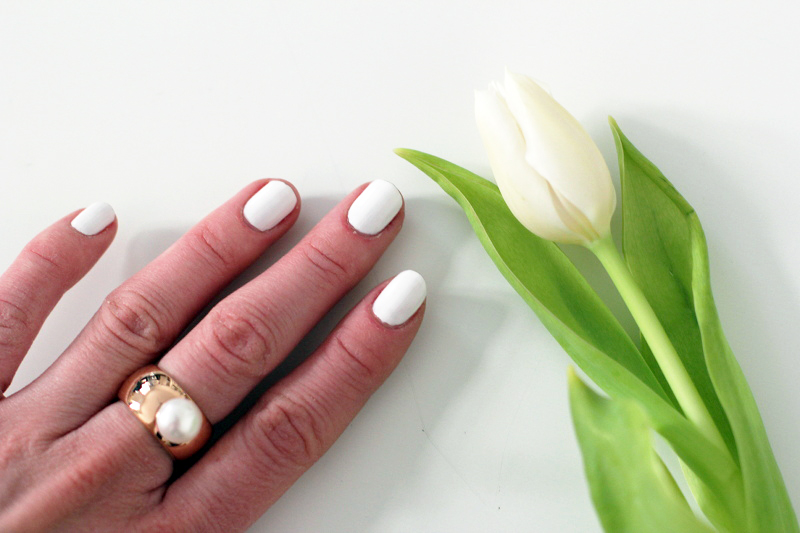 polish: flowers – white tulips